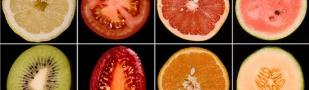 Fruto: por su gracia y para su gloria