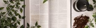 [Guía] Cómo buscar un versículo en la Biblia